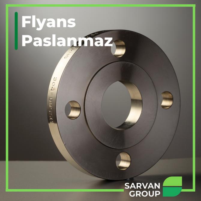 Paslanmaz Flyans / Flanes